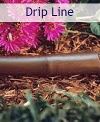 Drip Line Promo: links to drip line category